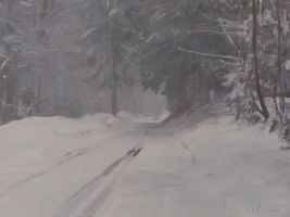 Road in the Snow, Switzerland by marcdalessio