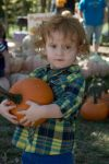 Pumpkin Patch - Fall 2013 by LukeMaynard