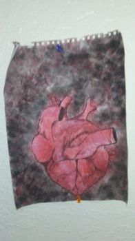 Anatomical heart by DestinyHearts218