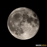 The Moon by Dave-D