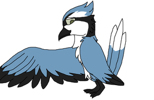 Bluejay by Maple467