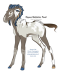 B-431 Tempus Tempestas - revised foal design by daughterofthestars