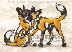 Ashenee And Wesley African Wild Dogs by WildSpiritWolf