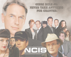 NCIS Wallpaper 1 by Nyssa-89