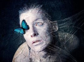 blue butterfly by milky78