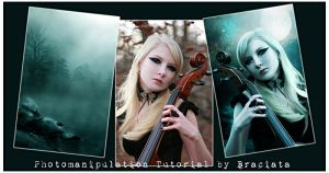 Free Photomanipulation Tutorial 003 by FP-Stock