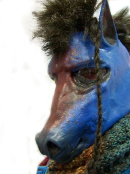 Cerulean Sangria Horse hood 2 by user-name-not-found