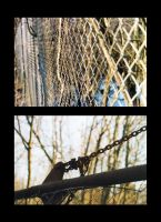 Mesh Wire Fence by Livanya