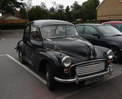 black moggy by awjay