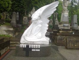 An angel monument cemetery in Lviv by rosenglas