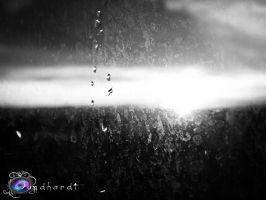 water droplets on glass by Gundhardt