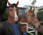Stunt Double (BoJack Horseman) by Toledo-the-Horse