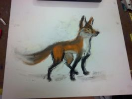 Cartoon Fox by BenRusk