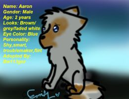 Aaron's Bio by bw113gez