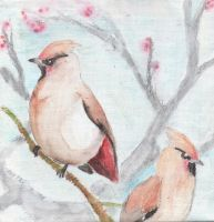 The Two Waxwings by PeachCanary