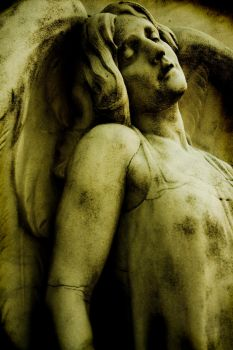 The Angel by entp