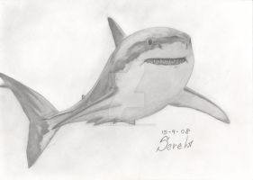 Great White 15-9-2008 by SarahRasmical
