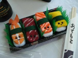 Plush Sushi Set by thedrunkenprincess