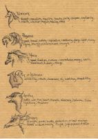 Metaphysical Totem Notes by pegacorna2