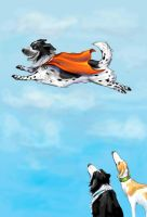 Super Cooper at the Dogpark by bluefooted