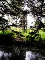 pitchenhouseinthebranches by priesteres-stock