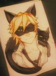 Miraculous Ladybug: Chat Noir by Kytru
