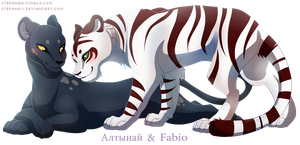 Panther and Tiger by StePandy