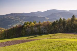Beskidy from the path to Makowica by Tullusion