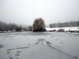 The frozen pond by captainflynn