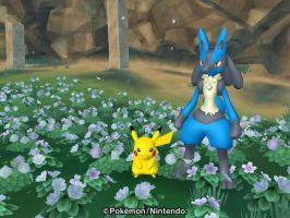 Pikachu and Lucario by SuperSmashCynderLum