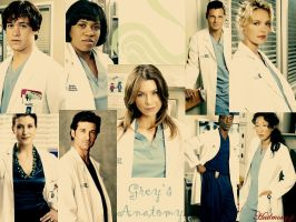 Grey's Anatomy by hailmony