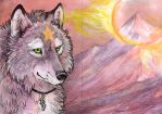 ACEO Silver by MoonsongWolf