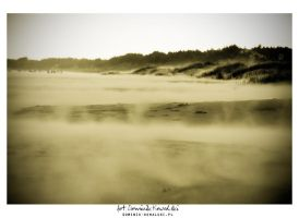 Sandstorm on the beach in Leba by dpzcwa