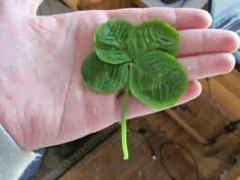 Four leaf clover: stock by Lythre-does-photos