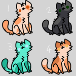 free adoptable cats by airestheragoncat