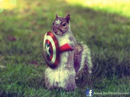 Captain Squirrel - The First Avenger by ShikharSrivastava