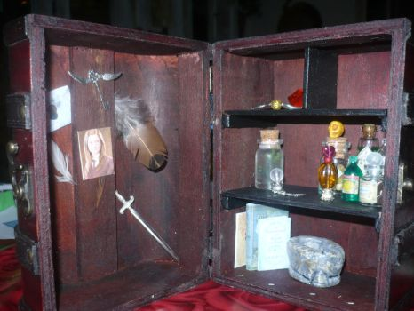 Harry Potter trunk. by Luppie05