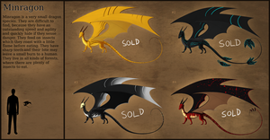 Minragon Adopts [Closed] by Chiakiro