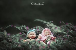 :: Gemello :: by RyantiRahma