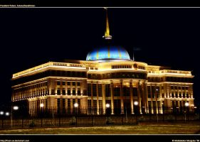 President Palace by frost-uw