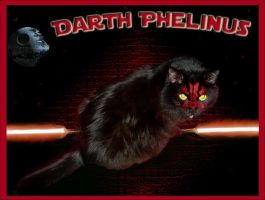 Darth Phelinus by TheDarkestwolf