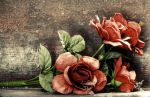 7.2.2015: Roses on the Stairs by Suensyan