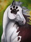 PawPrint Paint by Rayeo