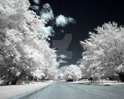 Infrared by JohnnyBlaze554
