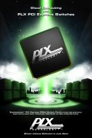PLX Technology poster study by blackcrow03