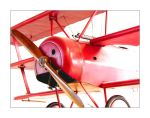 Red Baron by mirrormirror