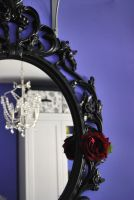 The mirror and the rose by Albarose7