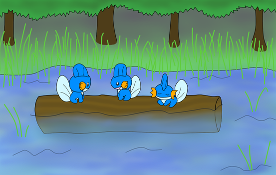 Three Blue Mudkips by Forestpelt