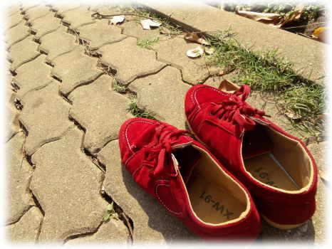 A Story of Shoes by imuya
