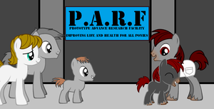 Imperial's Foalhood - Picture 4 by Imp344